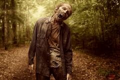 The Walking Dead S0918